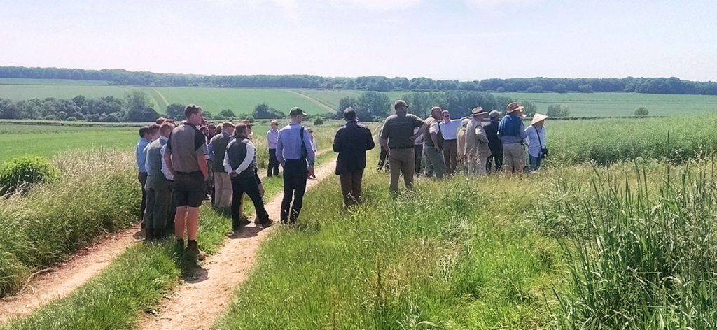 A tour of a wild grey partridge restoration project in June 2018 attracted farmers from miles around